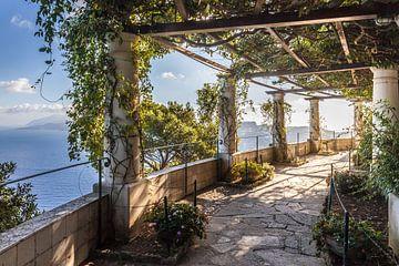 In de tuin van Villa San Michele in Capri van Christian Müringer