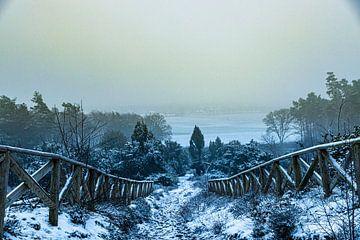 Winter von Koos de Vries