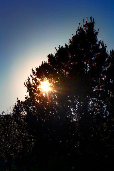 Ondergaande zon van Jan van der Knaap