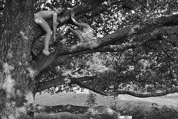 Treechildren. van Marianne de Wit-Koenen