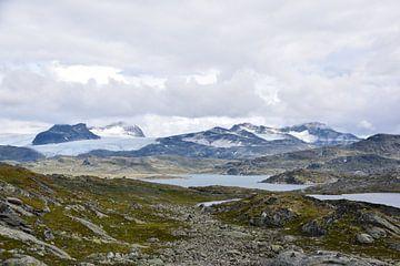 Parc national de Jotunheimen Norvège sur Dennis van Amstel
