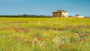 Andalusië van