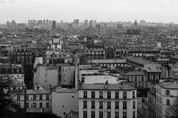 Paris from above van Remko Bochem