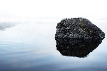 Rots in het meer