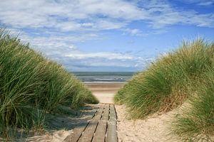 Strandübergang von Zeeland op Foto