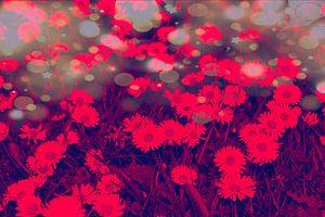 Rode bloemen van Jane Changart