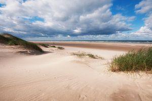Ruimtelijk beeld op strand van