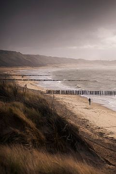 Windy Days (duinen Zoutelande) van Thom Brouwer