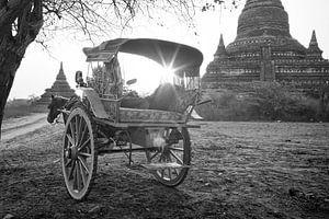 Paard en wagen tussen de tempels van Bagan, Myanmar van