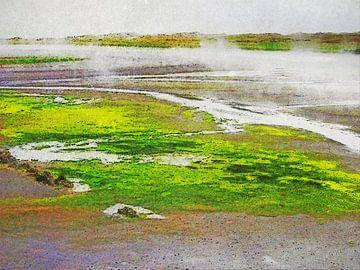 Zwart zand bij Djupivogur, IJsland