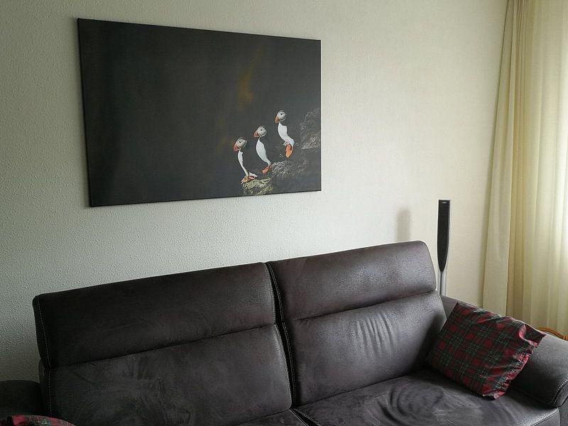 Klantfoto: Puffins van Edwin van Wijk
