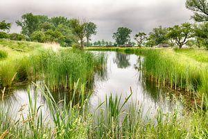 Nouvelle ligne d'eau néerlandaise sur Mark Bolijn