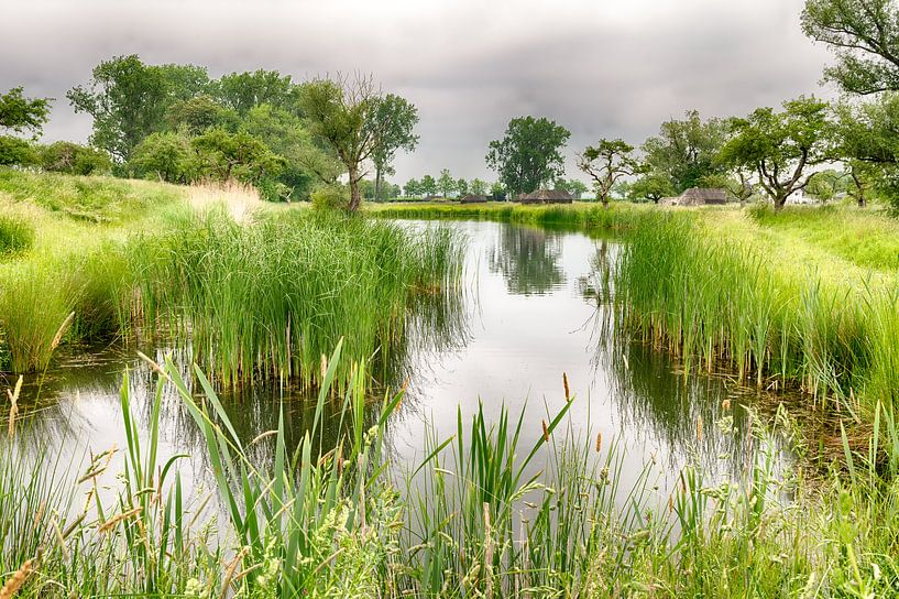 Nieuwe Hollandse Waterlinie van Mark Bolijn