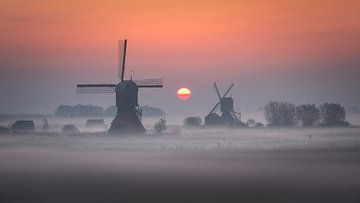 Molens bij zonsopgang II