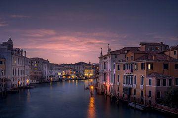 Uitzicht vanuit Accademia van Iman Azizi