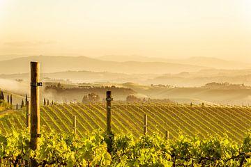 Toscane Ontwaakt van Tony Buijse