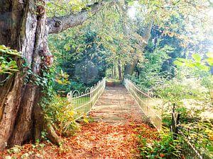 Bruggetje in goudkleurig herfstpark van