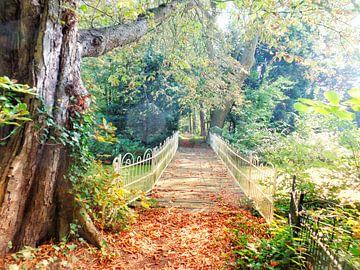 Bruggetje in goudkleurig herfstpark sur Daniël van Leeuwen
