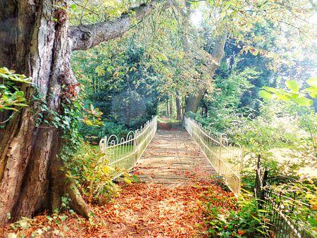 Bruggetje in goudkleurig herfstpark