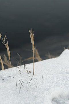 Minimalistisches Winter-Wunderland von HappyTravelSpots