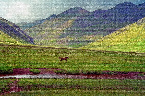 Spaanse Pyreneeën van Ronald Jansen