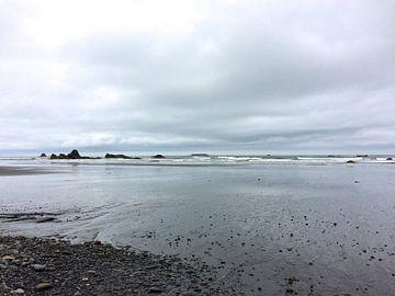 'Ruby's beach', Oregon  van