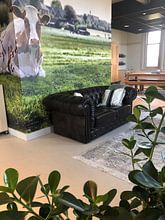 Kundenfoto: Boskoop the Netherlands von Rob van der Teen, auf fototapete