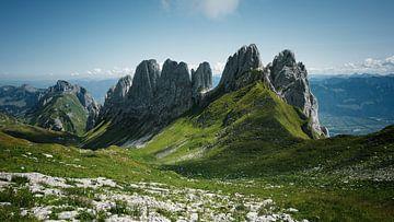 Zwitserse bergen van Reto Meier