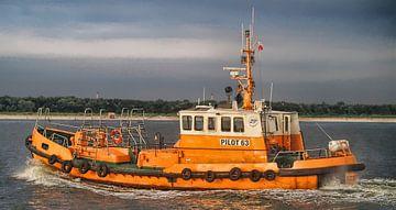 Lotsenboot Pilot 63