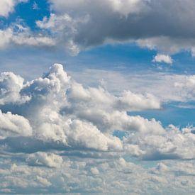 Cloudbusting van Dick Nieswaag
