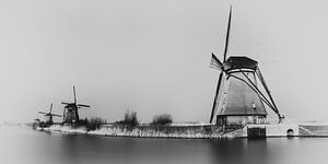 Dutch Mils