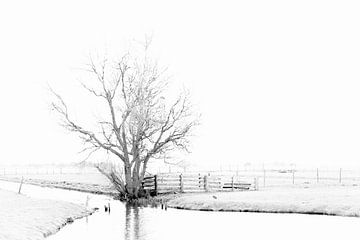 Polderlandschap von Marc Arts