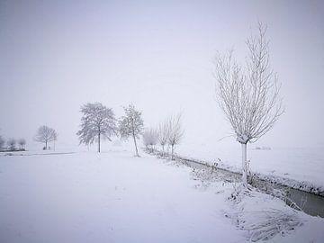 Winter in the parc 3 / Winter in het parc 3 van Malec Gebrek