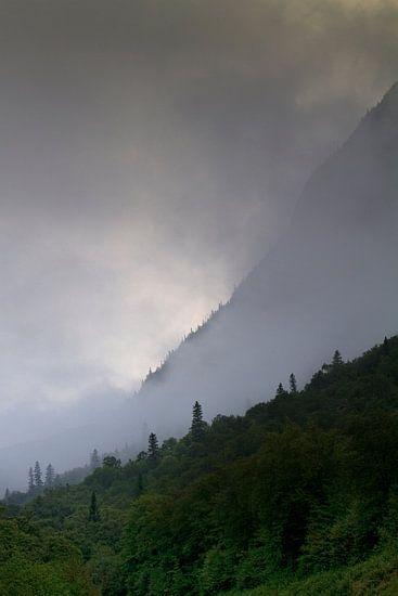 Flanc de Montagne  van Renald Bourque