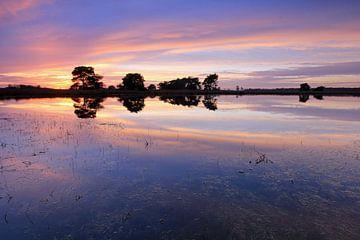 Strabrechtse Heide. van Patrick Brouwers