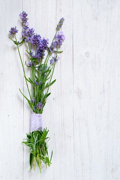 bosje bloeiende lavendeltakken op een wit geschilderde houten achtergrond met kopieerruimte, vertica van Maren Winter