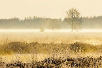 Sunrise Hijkerveld von Karla Leeftink