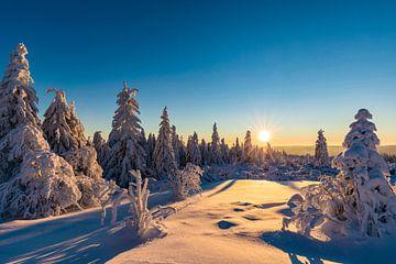 Winter in het Nationaal Park Schwarzwald van Werner Dieterich