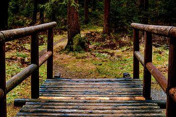 Die Brücke im Wald von Johnny Flash