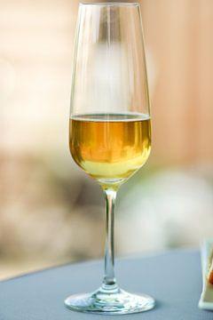 champagne van Petra Brouwer