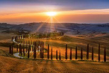 Stimmungsvolle Landschaft der Toskana in Italien mit geschwungenem Zypressenweg von Fine Art Fotografie