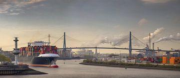 Panorama eines Containerschiffs am morgen im Hafen von Hamburg von Jonas Weinitschke