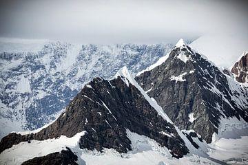 Antarctica van Rick Folkerts