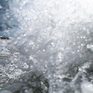 splash! van Arjan van Duijvenboden