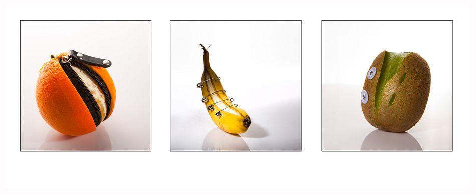 Fruitstick van Leo van Valkenburg