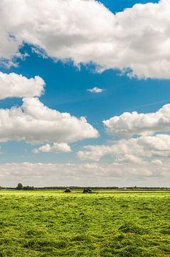 Vers gemaaid boerenland van Richard Janssen