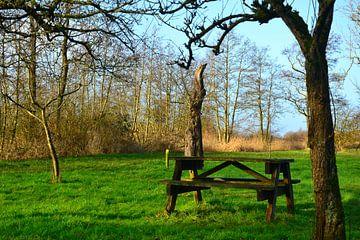 Picknick Bankje in Groen veld onder oude bomen van Mark van der Werf