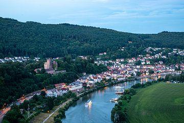 Neckarsteinach, Hessen, Duitsland van Guenter Purin