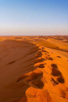 Voetstappen in de Woestijn van Photography by Cynthia Frankvoort