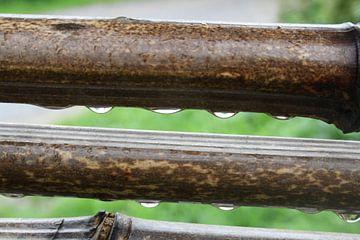 hout met druppels van Dewi Hoffs